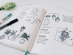 Studyblr Inspiration