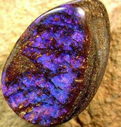 Extremely rare Purple Opalized Wood From Australia Photo: .OpalAuctions #Opal #Australia  Visit Amazing Geologist for more..