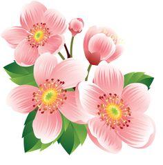 "Photo from album ""клипарт Цветы"" on Yandex. Flower Frame, Flower Art, Nice Flower, Nail Art Printer, Rock Flowers, Hibiscus Flowers, Homemade Art, Clip Art, Decoupage Vintage"