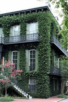Vine-covered exterior in Savannah, Georgia. I remember seeing this house the many times I visited Savannah when I was a freshman at Valdosta College. Exterior Design, Interior And Exterior, Architecture Design, Chinese Architecture, Architecture Office, Futuristic Architecture, Beautiful Homes, Beautiful Places, Ivy House