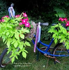 DIY Project ~ My Bicycle Planter: Tutorial:  For about a year, I have been admiring those bicycle planters on Pinterest and Hometalk and wanting to make one for our garden.  This old Huffy did not have any baskets, but I had a wire half basket and a woven basket in my shed. A little white spray paint later, they matched and were ready to go!