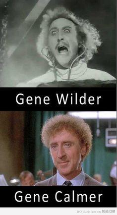 Gene wilder aka willy wonka meme guy