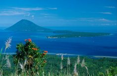 Bunaken National Marine Park,Sulawesi island, Indonesia: the place where my grandfather is born. Komodo National Park, National Parks, Milky Way Photos, 7 Natural Wonders, Lake Toba, Makassar, World Heritage Sites, Southeast Asia, Places To See