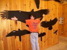nature center display ideas | Camp Tecumseh News » New Nature Center Display | Center Ideas