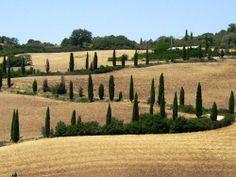 Italie_Toscane_Landscape1.jpg 500×375 pixels