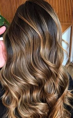 Chestnut highlights for this hair Brown Hair With Blonde Highlights, Hair Highlights, Chestnut Highlights, Balayage Ombré, Beautiful Hair Color, Pinterest Hair, Light Brown Hair, Brunette Hair, Hairstyles Haircuts