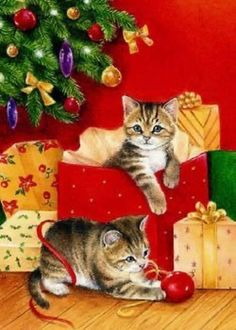 Cat Christmas Cards, Christmas Card Pictures, Christmas Kitten, Christmas Scenes, Noel Christmas, Christmas Animals, Vintage Christmas Cards, Christmas Pictures, Xmas Cards