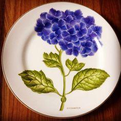 """Pratos """"botânica"""" by Silvia Carneiro"""