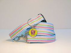 Buy this funky matching dog collar and lead. Bought to you via www.spoiltdoggie.co.uk