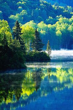 Canadian Summer Morning,by Mircea Costina.