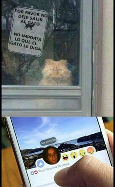 Read secreto from the story TU SECRETO + MEMES (meta: lecturas) by SiloDeFelippe (SILO) with reads. Funny Spanish Memes, Spanish Humor, Funny Relatable Memes, Funny Jokes, Hilarious, Funny Cats, Funny Short Videos, Humor Mexicano, Rare Images