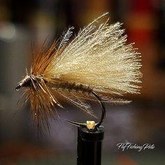 CDC and biot caddis with @whitingfarms furnace saddle hackle. #flyfishing #flytying #flytyingjunkie #flytyingaddict #flugbindning #fluebinding #torrfluga #troutfishing #troutcandy #dryordie #dryfly #caddisfly #caddis #tyingflies #atthevise #moonlitflyfishing