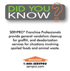 SERVPRO of Keene Did You Know? Vandalism and Graffiti Clean Up