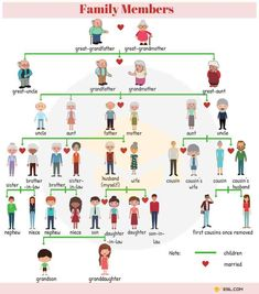 Members of the Family Vocabulary in English - ESL Buzz