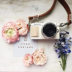 Keep learning. Improve your photography with my two week online… Flat Lay Photography, Photography Lessons, Photography Courses, Photography For Beginners, Tumblr Photography, Photography Camera, Video Photography, Hipster Photography, Creative Photography