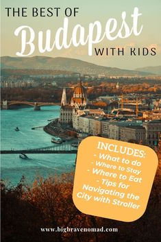 Budapest is one of the best European cities to visit with kids. Everything is walkable, affordable and family friendly. Public transport is also extremely easy and efficient. Budapest is a must see. Traveling With Baby, Travel With Kids, Family Travel, Family Vacations, Budapest Travel, Buda Castle, Hungary Travel, Europe Destinations, Holiday Destinations