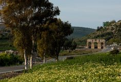 Patara - Selected (ancient) / Seçme (antik)  Ancient city in Mediterranean coast / Akdeniz kıyısında antik kent.
