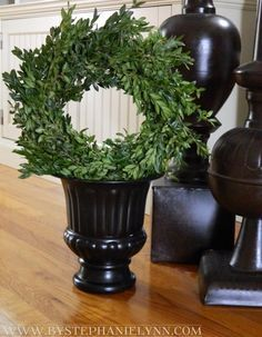 This Christmas, create this Boxwood Wreath Topiary by balancing it inside an urn—add a Christmas touch with red and green ribbons, and place on your front porch.