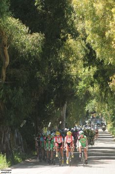Tour of Turkey Photos; Stage 5: Marmaris → Turgutreis, 178 km (hilly) - About to enter the coast route.... a really small road