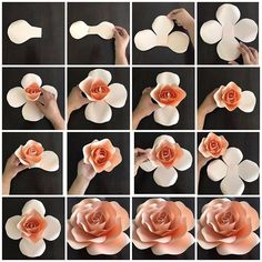 Create your own paper flowers using CBM templates. This listing is for hard copy paper flower templates which are made out of cardstock paper and are ready to use. The listing price is for ONE t (Diy Paper Flowers) Create your own paper flowers using CBM Paper Flowers Craft, Large Paper Flowers, Paper Flower Wall, Paper Flower Backdrop, Giant Paper Flowers, Flower Crafts, Fabric Flowers, Paper Crafts, Diy Crafts