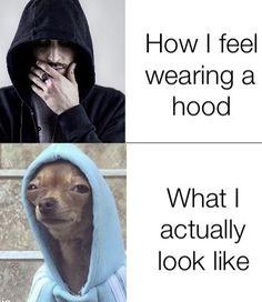Crazy Funny Memes, Really Funny Memes, Stupid Funny Memes, Funny Tweets, Funny Facts, Funny Relatable Memes, Haha Funny, Funny Stuff, Lol Memes