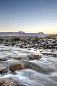 You're in for a treat at The Cavern Drakensberg Resort & Spa, set in a secluded valley beneath the massive sandstone cliffs of the Northern Drakensberg.