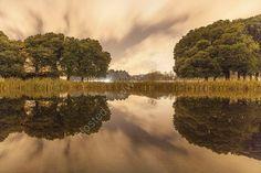 The Citadel Pond, Phoenix Park, Dublin, Ireland. www.MartinBakerPhotography.com
