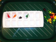 ice trays as a concrete way to teach number correspondence in math. - the only think i'm not a fan of is the use of spiders!