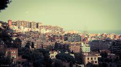 Barcelona City II   John Bencina Photography