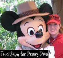 Tips from the Disney Diva: Fast Pass Pouches