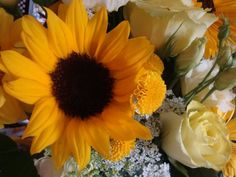 Sunflowers make me happy =)