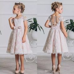 Princess Short Lace Girls Pageant Dress Sash Knee Length 2018 Girl Communion Dress Kids Formal Wear Flower Girls Dresses For Wedding Flower Girls Gown Fuschia Flower Girl Dresses From Weddingdress1989, $70.36| Dhgate.Com