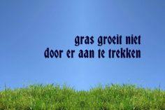 ❤️ Gras groeit niet door er aan te trekken.