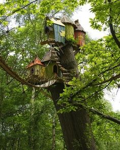 The Weasley Family Tree House