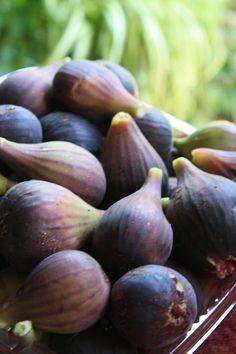 Figs!!