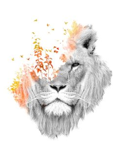lion nature surreal photo manipulation double exposure cat dream fantasy watercolor light forest Animals