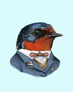 This swallow wears a sailboat pin as a personal salute to all the sailors who have tattooed his likeness on their arms. He wanted to return the favor properly, but the tattoo artist couldn't find his bicep.