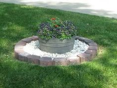 washbasin garden perfect for our arctic area - Garden Ideas To Hide Septic Tank