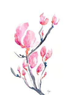 Japanese magnolias #watercolor #tattoo