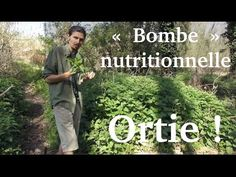 """Jus d'ortie, la """"bombe"""" nutritionnelle du printemps - www.regenere.org Compound Butter, Spice Blends, Permaculture, The Cure, Knowledge, Herbs, Health, Youtube, Food"""