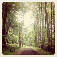 from http://saipua.blogspot.com/