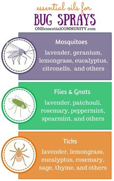 Essential oils  Bug sprays: please ticks fleas ticks mosquitoes gnats