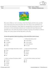 Literacy: Reading comprehension - I am a monkey (short text) First Grade Reading Comprehension, Reading Comprehension Worksheets, Math Practice Worksheets, School Worksheets, I Like To Dance, English Teaching Materials, English Reading, Interactive Learning, School Readiness