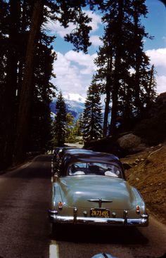 Yosemite, 1954
