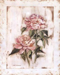 rose impression- Pamela Gladding