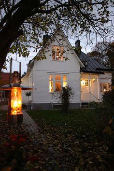 Lilla villa vita panel, färg och tak