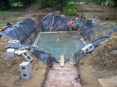 natural pools | Pond Design, Natural Swimming Pools, Pond Design Cornwall, Eco Pools ...