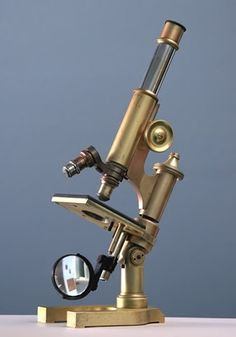 Ernst Leitz Wetzlar Continental Microscope | 1903