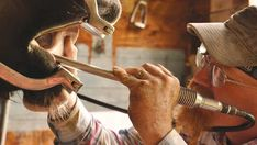 To understand your horse's dental needs, you need to know what's going on in his mouth at each stage of his development, says certified equine dentist Grant MacKinnon of Prince Albert, SK. ...