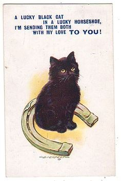 Black cat and horseshoe postcard. Black cats are just as lucky as an iron horseshoe!